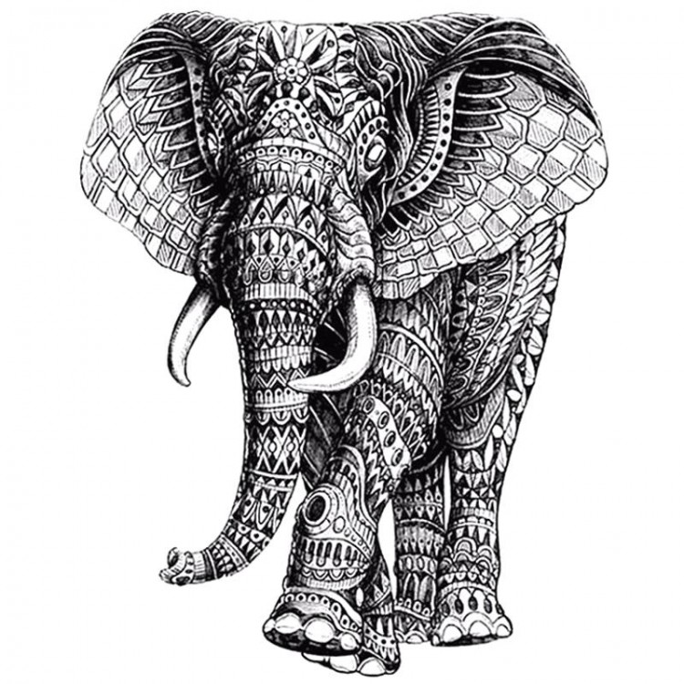 ELEPHANT ROI